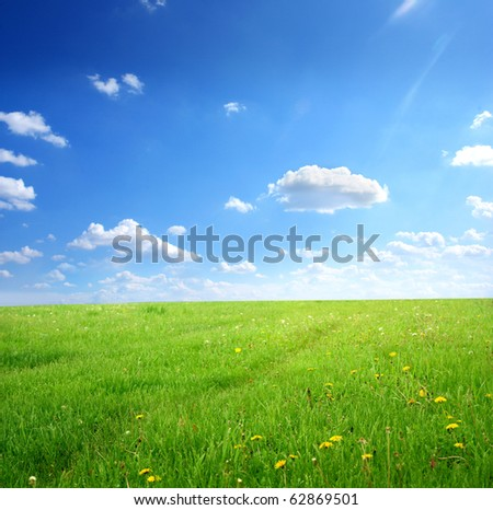 Green field with flowers under cloudy sky - stock photo