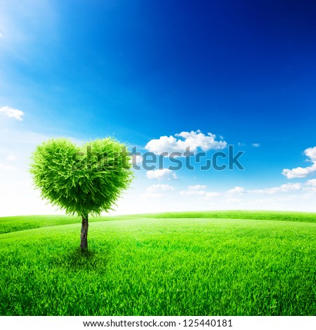 Green field with heart shape tree under blue sky. Beauty nature. Valentine concept background - stock photo