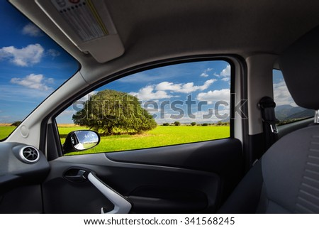 Green field with lonely tree viewed from inside a car