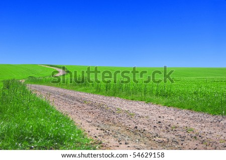 Green field with road and blue sky. Picture of green field and sky in summer.