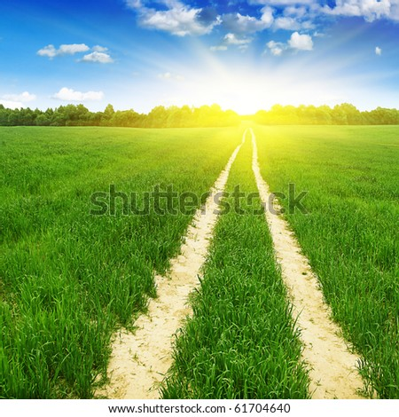 Green field with road and sun. - stock photo