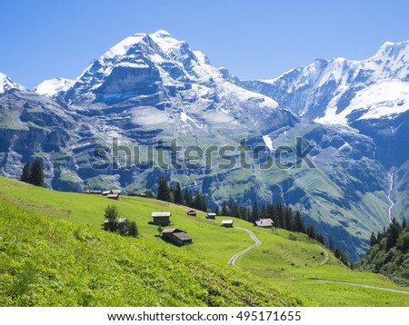 Green field with the Eiger on the background, Jungfrau region, Switzerland