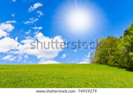 green field with white cloudscape