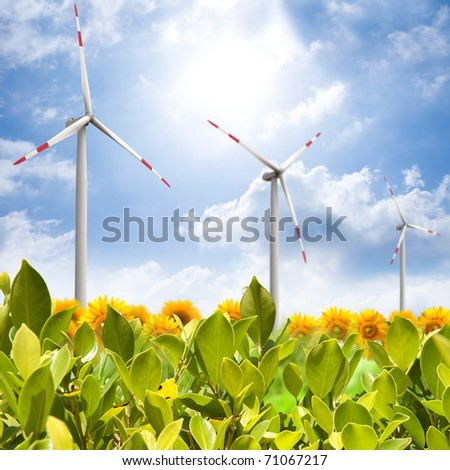 Green field with wind turbines