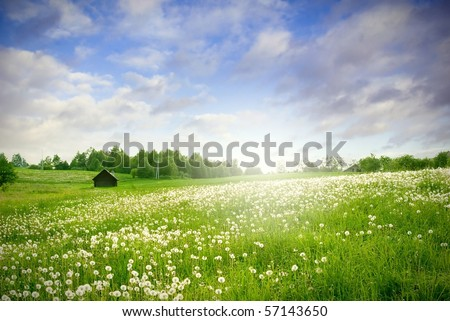 green field with with sun landscape - stock photo