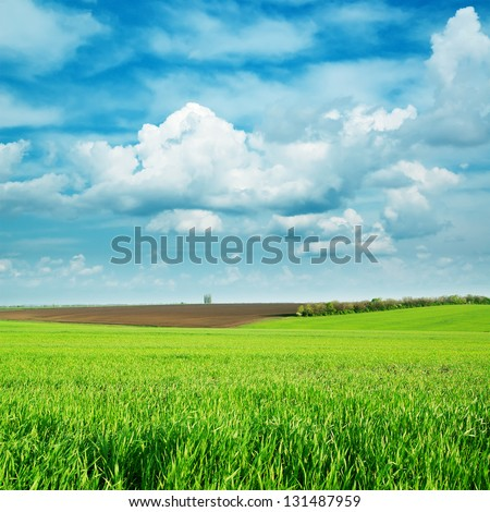 green fields and cloudy sky - stock photo