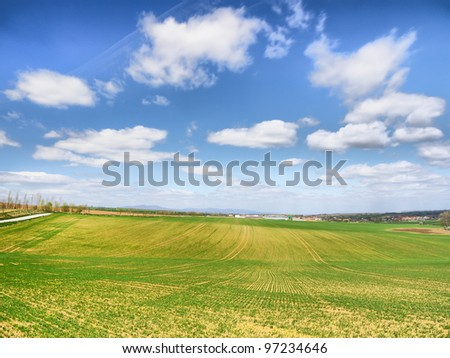 Green fields of freshly growing crops with a beautiful blue sky with white cloud