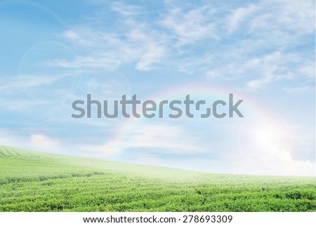 green fields on background of the blue sky with rainbow and lighting flare - stock photo