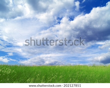 Green filed, blue sky and white clouds - stock photo