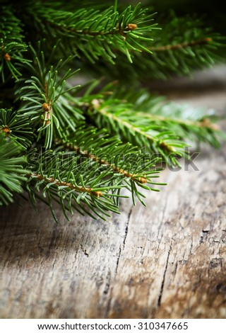 Green fir branches on an old wooden background, selective focus - stock photo