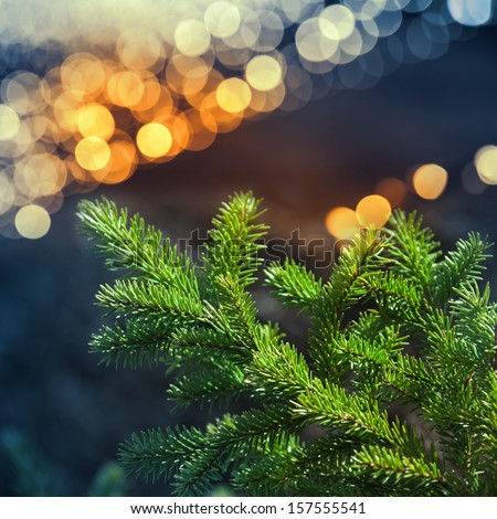 Green fir tree branch closeup photo with colorful garland lights bokeh - stock photo