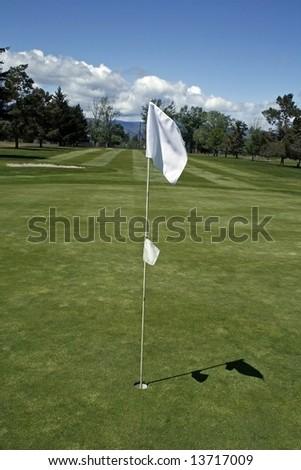 Green Flag - stock photo