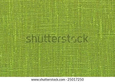 Green flax macro - stock photo