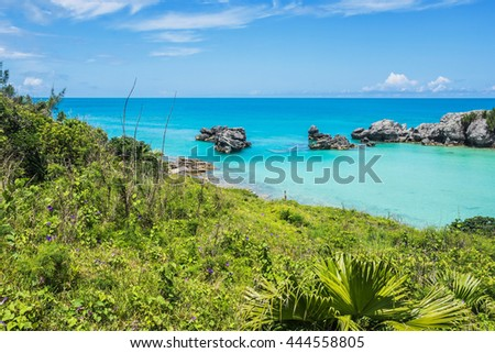 Green foliage and morning glories surround this tranquil seascape of Tobacco Bay in Bermuda. - stock photo
