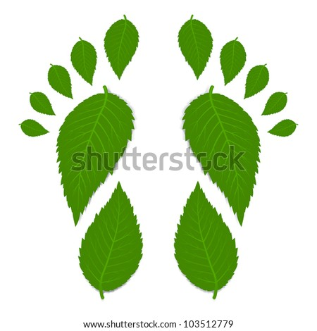Green footprint made by leaves isolated on white with shadow