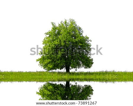 Green for Life - stock photo