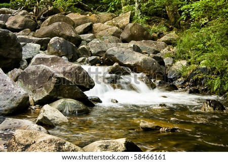 green forest and river - stock photo