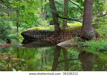 green forest and river with big stone - stock photo
