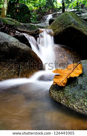 Green forest and waterfall - motion slow waterfall - stock photo