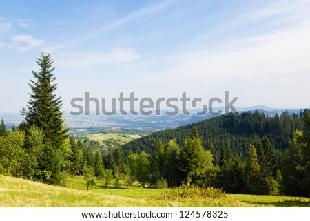 Green Forest in Beskids Mountains