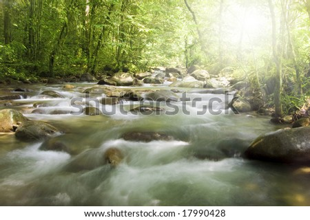 green forest , river and ray of light - stock photo