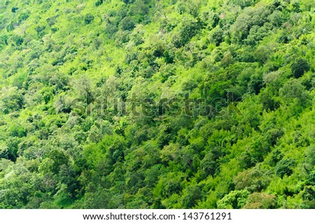 Green forrest from above in Thailand - stock photo
