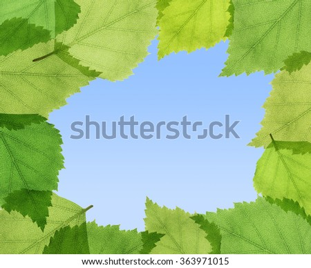 Green frame made of leaves against blue sky. Copyspace. - stock photo