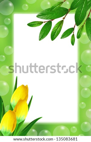 Green frame with leaves, tulips and soap bubbles - stock photo