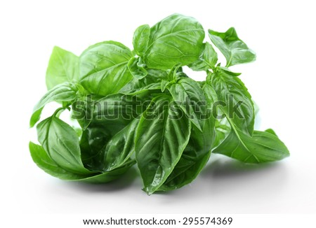 Green fresh basil isolated on white - stock photo