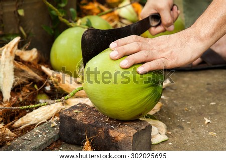 Green fresh coconut peeling. Shelling coconut with heavy chop knife for juice - stock photo