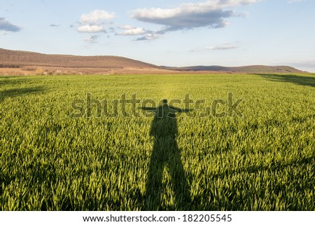 Green fresh grass with man shadow and blue sky - stock photo