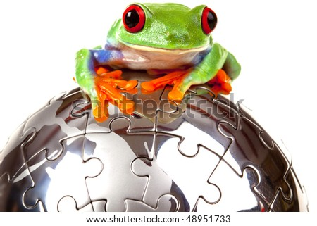 Green frog on puzzle globe - stock photo
