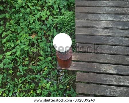 Green garden walkway. - stock photo