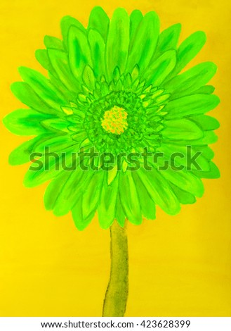 Green gervera flower on yellow background, painting in watercolours - stock photo