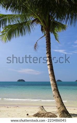 Green Getaway Exotic Paradise  - stock photo