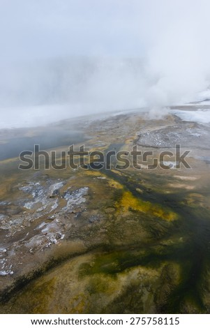 Green geyser flow with steam Yellowstone National Park. - stock photo