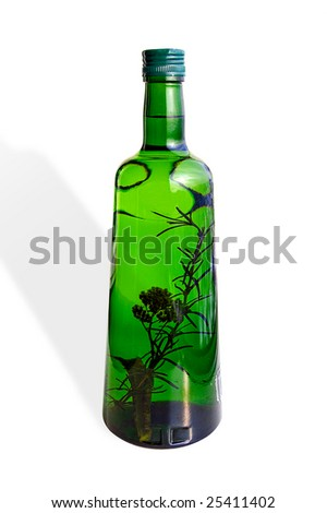 Green glass bottle with various herbs inside isolated on white - stock photo