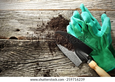 green gloves  - stock photo