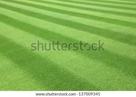 Green  golf  Fairway textured pattern - stock photo