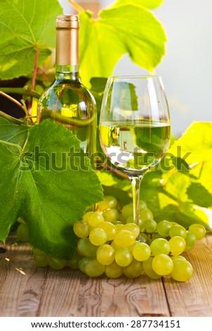 green grape and sweet wine in vineyard - stock photo