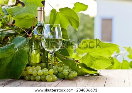 green grape and white wine in vineyard - stock photo