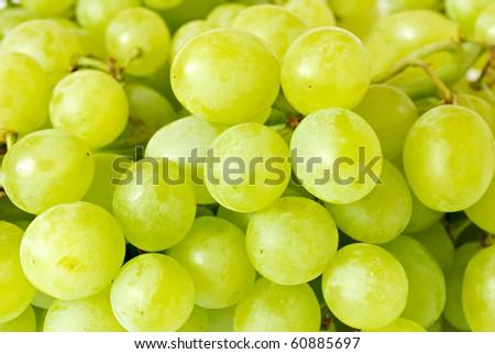 green grape closeup - stock photo
