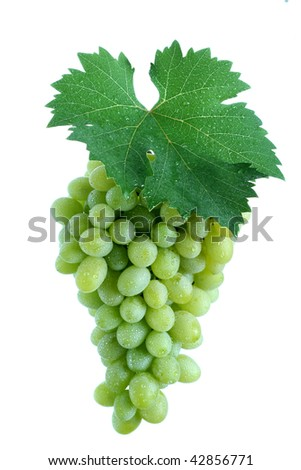 Green grape cluster with leaf, white background - stock photo