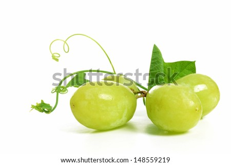 green grapes and vine white background - stock photo