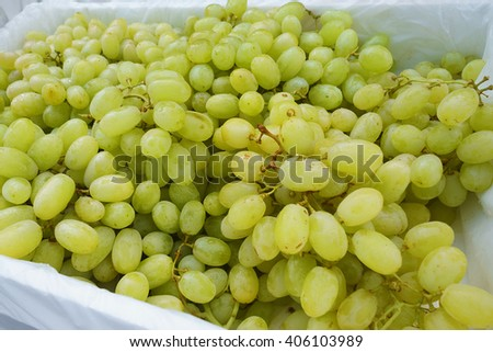 Green grapes for sale at a market - stock photo