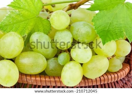 Green Grapes in closeup - stock photo