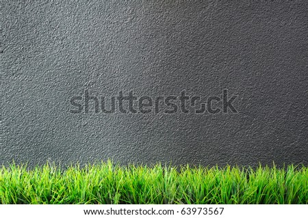 Green grass against a grey wall - stock photo