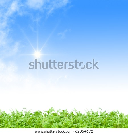 Green grass against a perfect sunny blue sky - stock photo