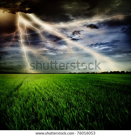 Green grass against a stormy sky