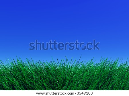 Green grass against blue sky - stock photo